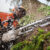 What Is The Best Logging Chainsaw?