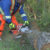 The Best Chainsaw Safety And Training Courses: Online And In Person