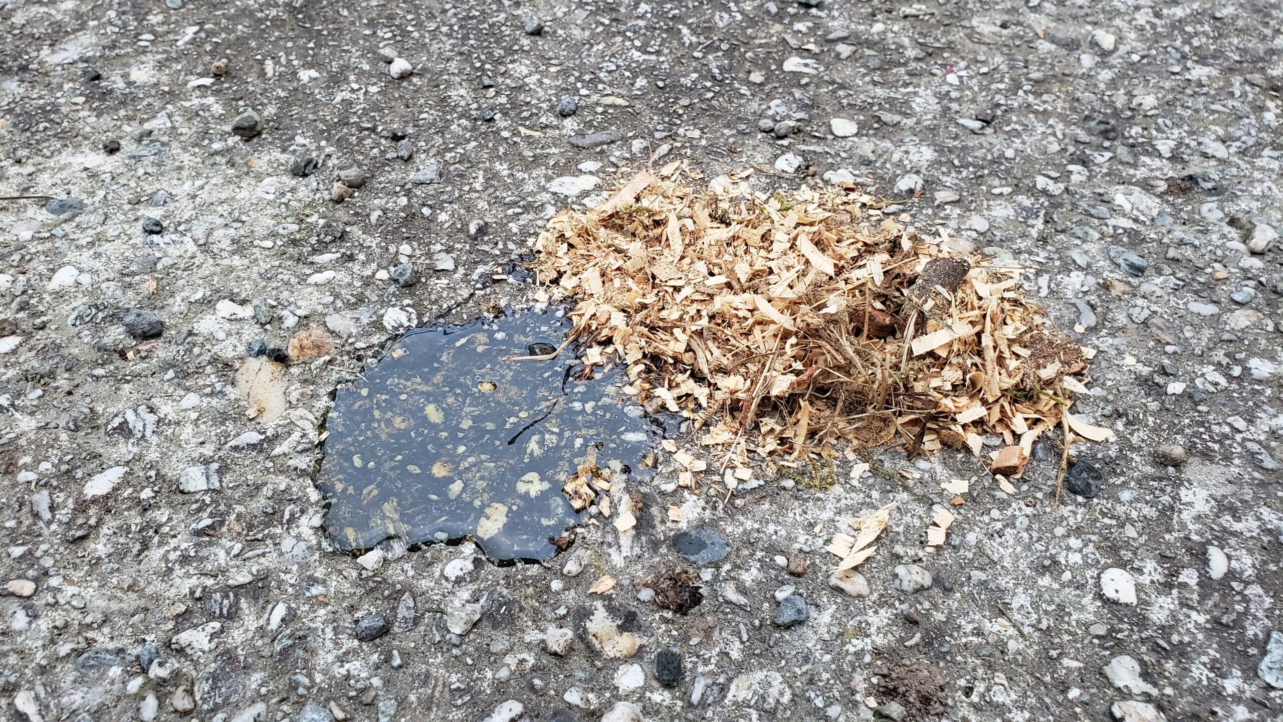 sawdust recycling